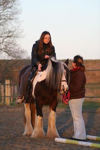 begeleiden-met-paarden-2